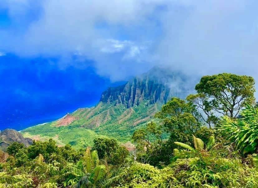 Kauai Travel Medical Supplies