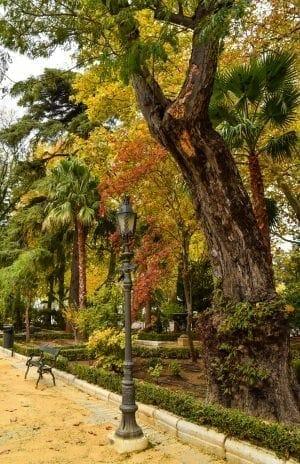 Alameda del Tajo Park Ronda