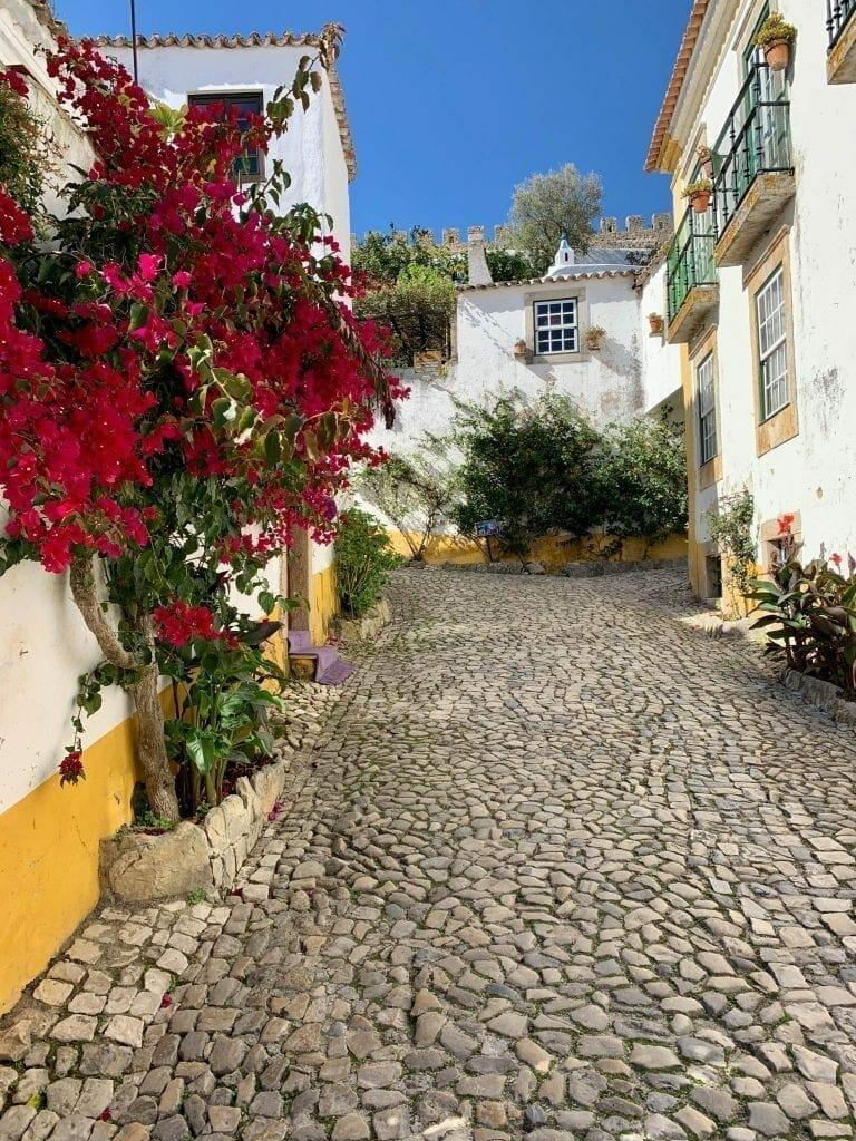 Cobblestone streets of Obidos